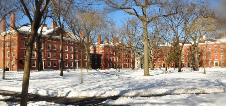 Harvard University Yard Winter