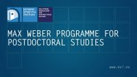 Max Weber Programme Fellowship at the European University Institute (EUI)