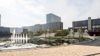 Erasmus University Rotterdam International Business Administration (IBA)